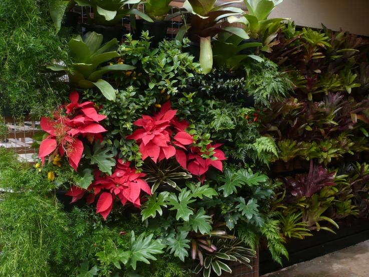 Venham visitar o jardim vertical do nosso show room!